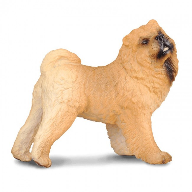 COLLECTA ΣΚΥΛΟΣ CHOW CHOW