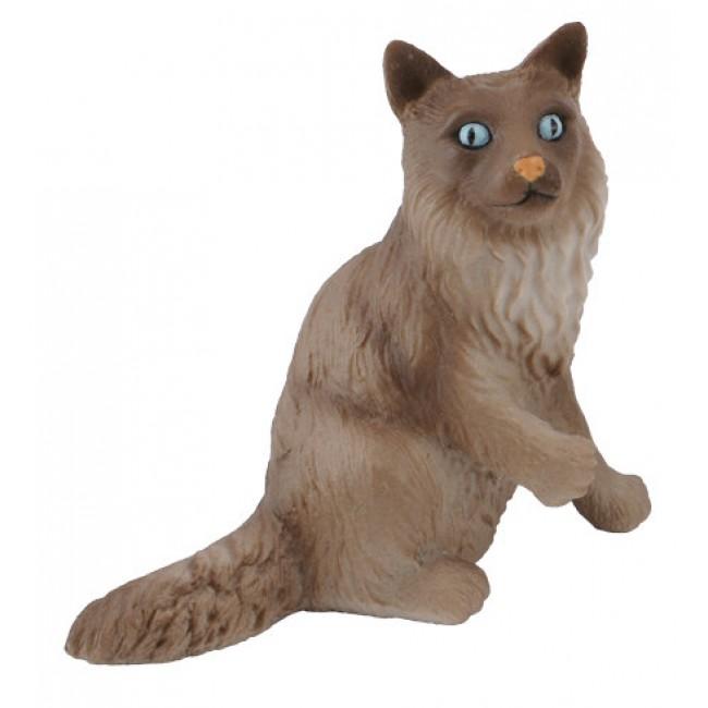 BIRMAN CAT SITTING M